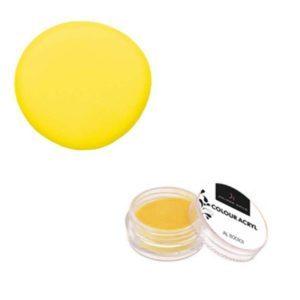 Colore Acrilico Limone 2,5g