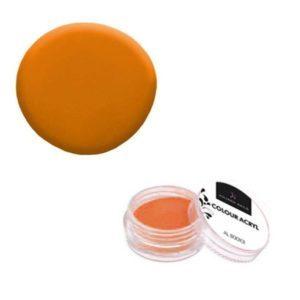 Colore Acrilico Arancio 2,5g