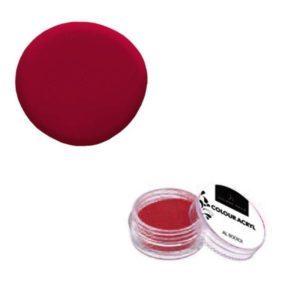 Colore Acrilico Rosso 2,5g