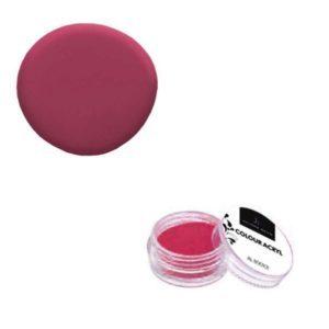 Colore Acrilico Rosa 2,5g