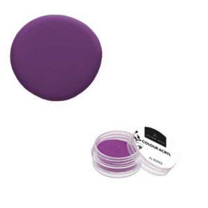 Colore Acrilico Uva 2,5g