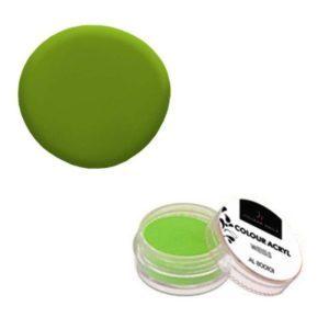 Colore Acrilico Verde Felce 2,5g