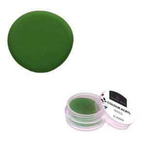 Colore Acrilico Verde 2,5g