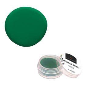 Colore Acrilico Pastello Verde 2,5g