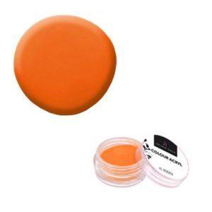Colore Acrilico Neon Arancio 2,5g