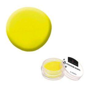 Colore Acrilico Neon Giallo 2,5g