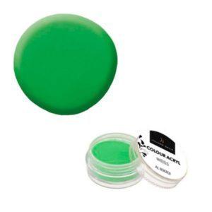 Colore Acrilico Neon Verde 2,5g