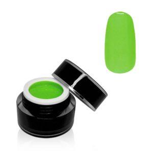 Paint Gel Flashy Green 5g