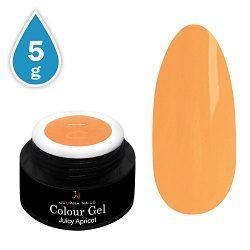 Colour Gel Juicy Apricot 5g
